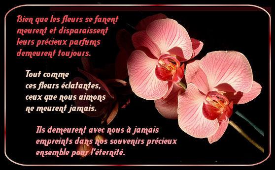 poeme a l etre aime